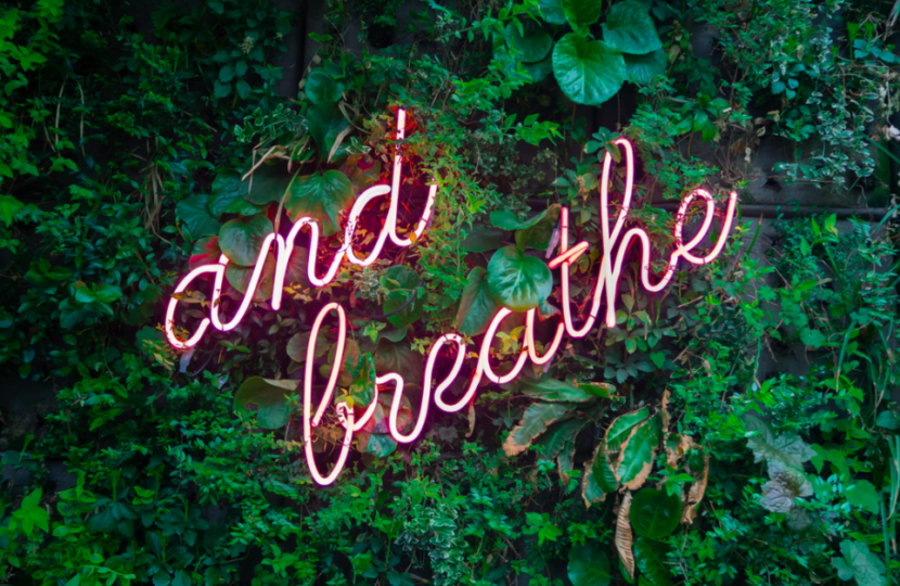 neon-sign-breathe-on-plant-wall